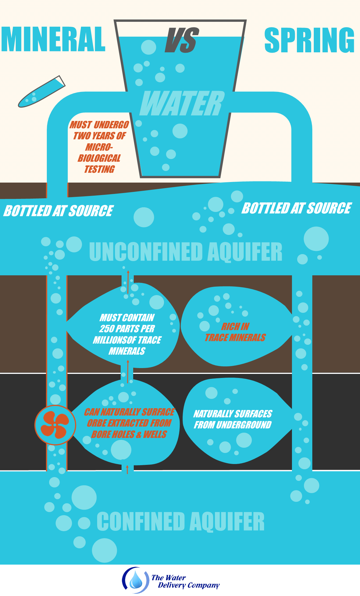 INFOGRAPHIC TWDC Spring vs Mineral Water Infgraphic Whats the difference between spring and mineral water?