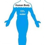 percentage of water in body